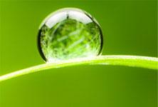 green methods